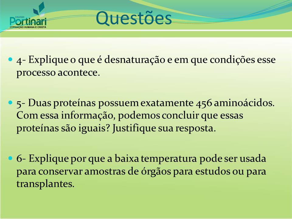 Questões 4- Explique o que é desnaturação e em que condições esse processo acontece.