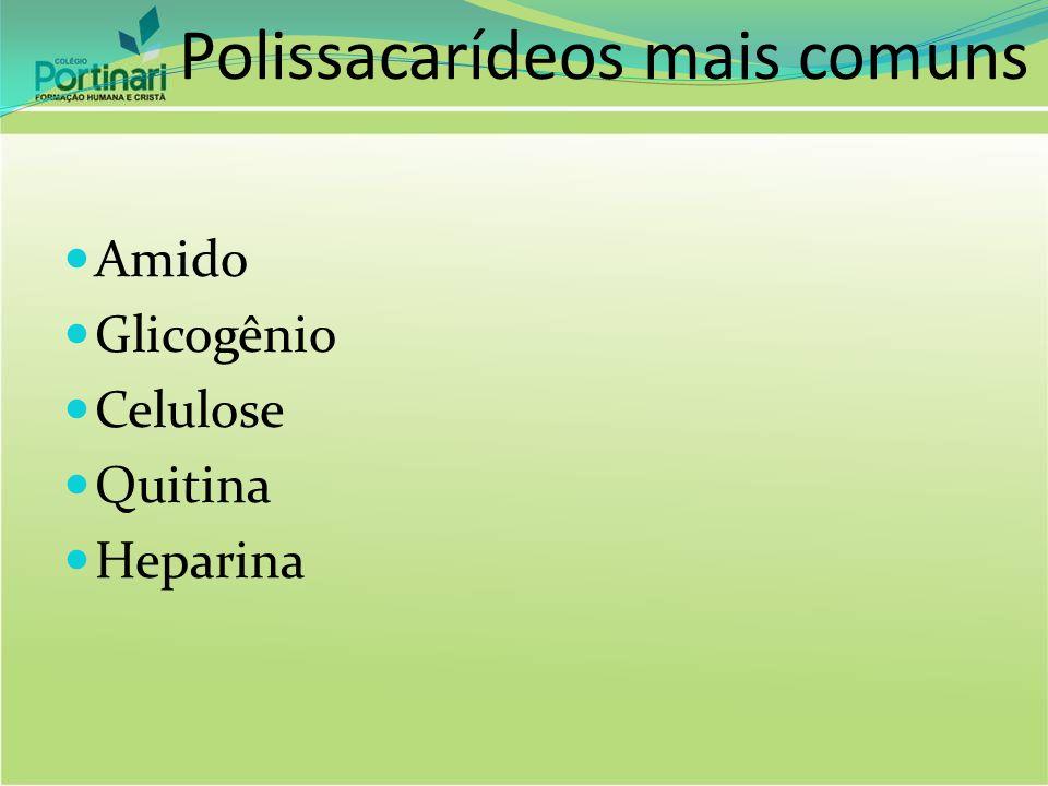Polissacarídeos mais comuns