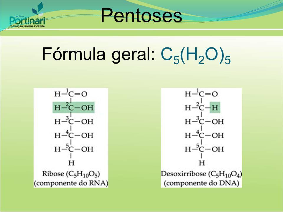 Pentoses Fórmula geral: C5(H2O)5