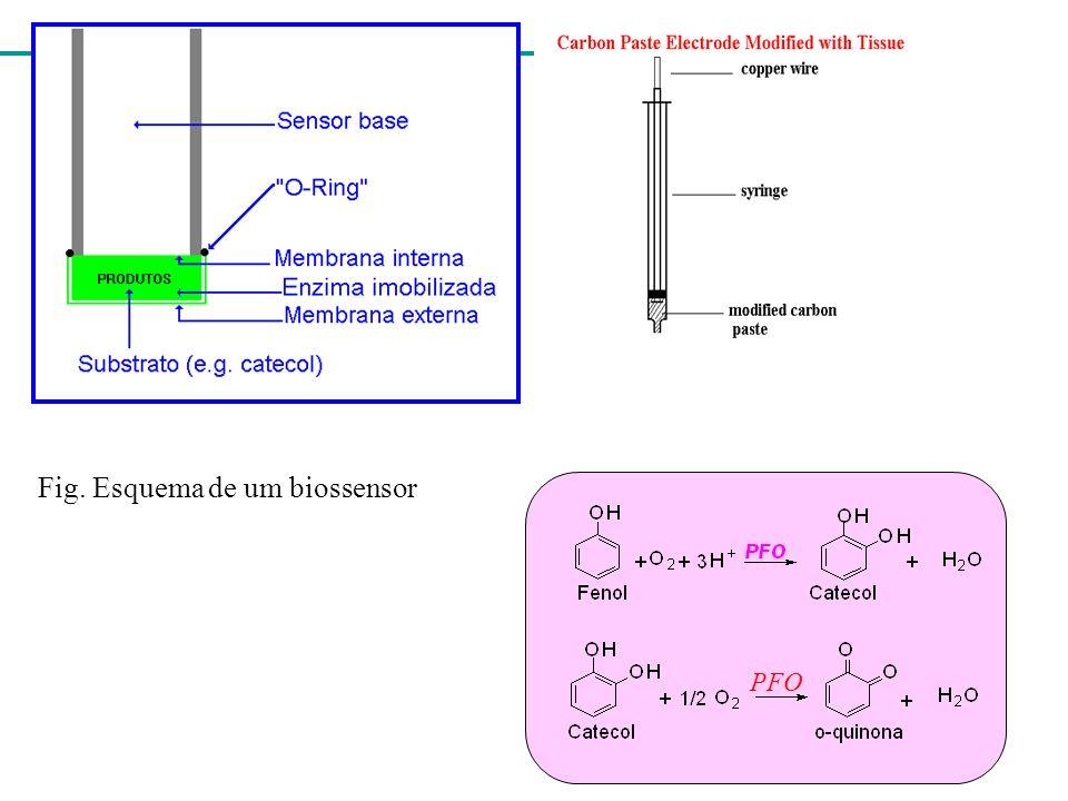 Fig. Esquema de um biossensor