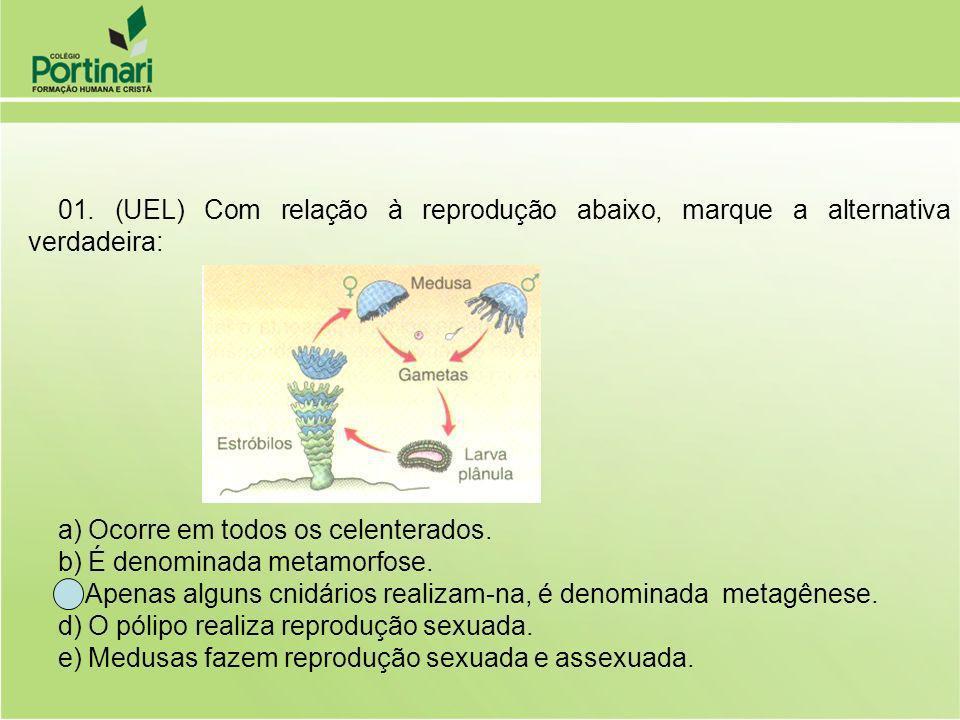 01. (UEL) Com relação à reprodução abaixo, marque a alternativa verdadeira: a) Ocorre em todos os celenterados.