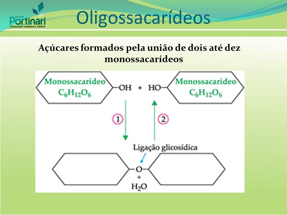 Açúcares formados pela união de dois até dez monossacarídeos