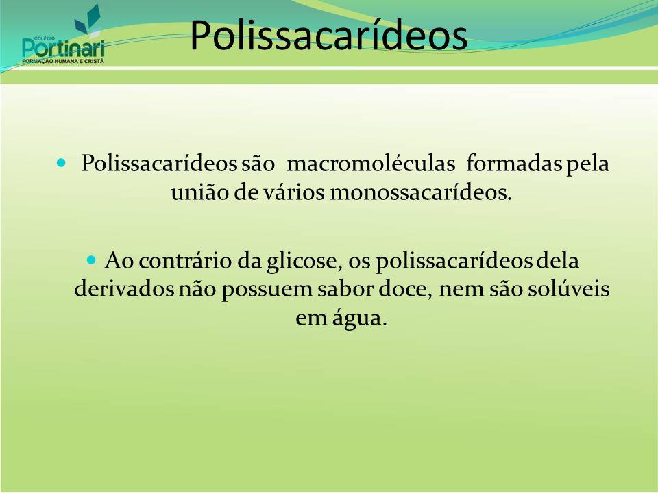 Polissacarídeos Polissacarídeos são macromoléculas formadas pela união de vários monossacarídeos.