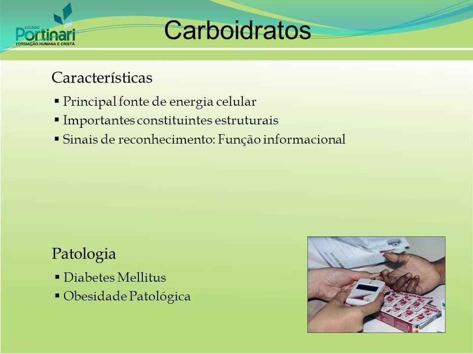 Carboidratos Características Patologia