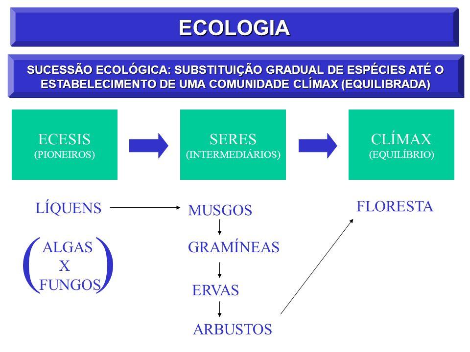 ( ) ECOLOGIA ECESIS SERES CLÍMAX LÍQUENS FLORESTA MUSGOS ALGAS X