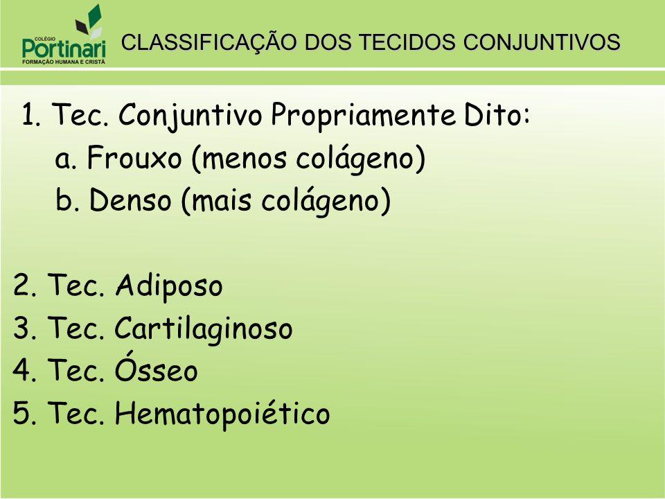 CLASSIFICAÇÃO DOS TECIDOS CONJUNTIVOS