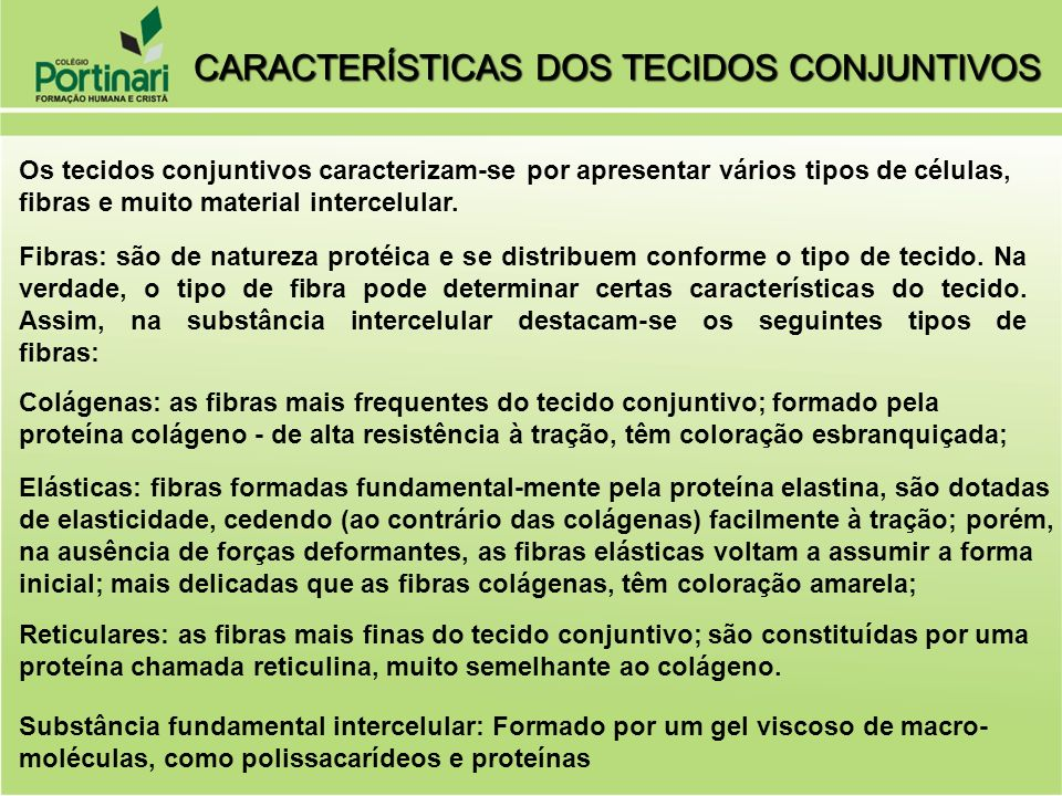 CARACTERÍSTICAS DOS TECIDOS CONJUNTIVOS