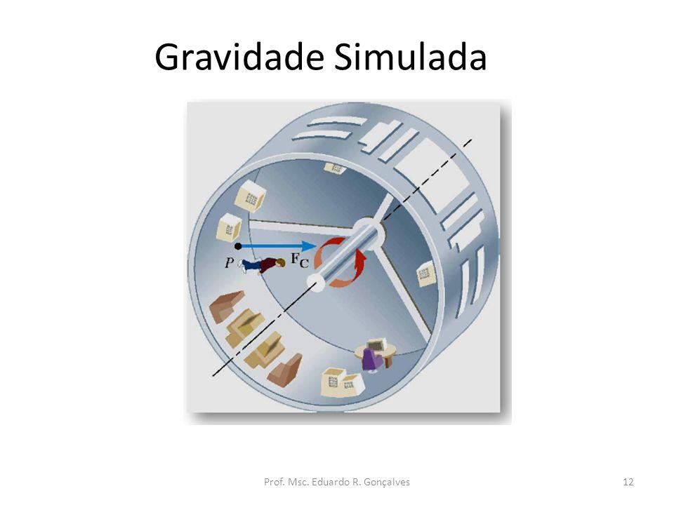 Prof. Msc. Eduardo R. Gonçalves
