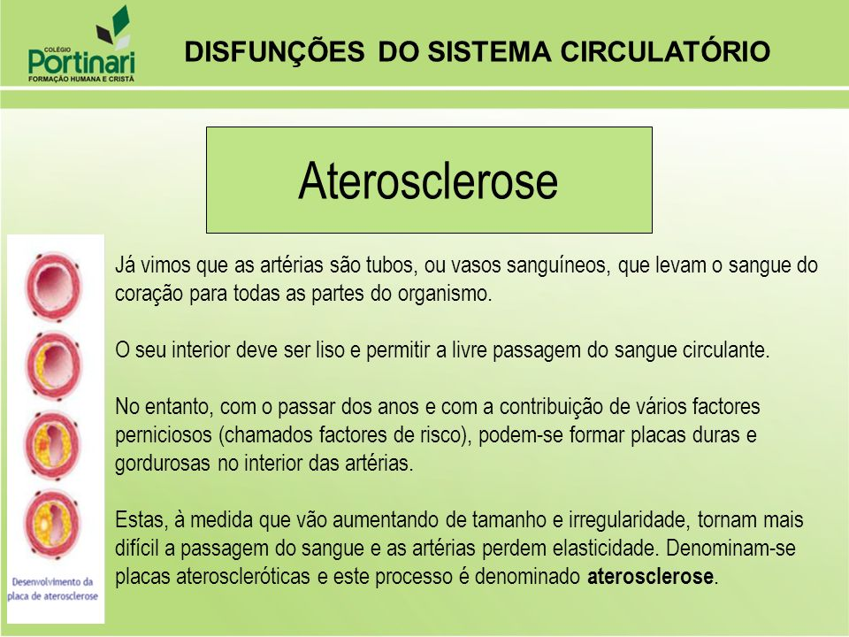 Aterosclerose DISFUNÇÕES DO SISTEMA CIRCULATÓRIO
