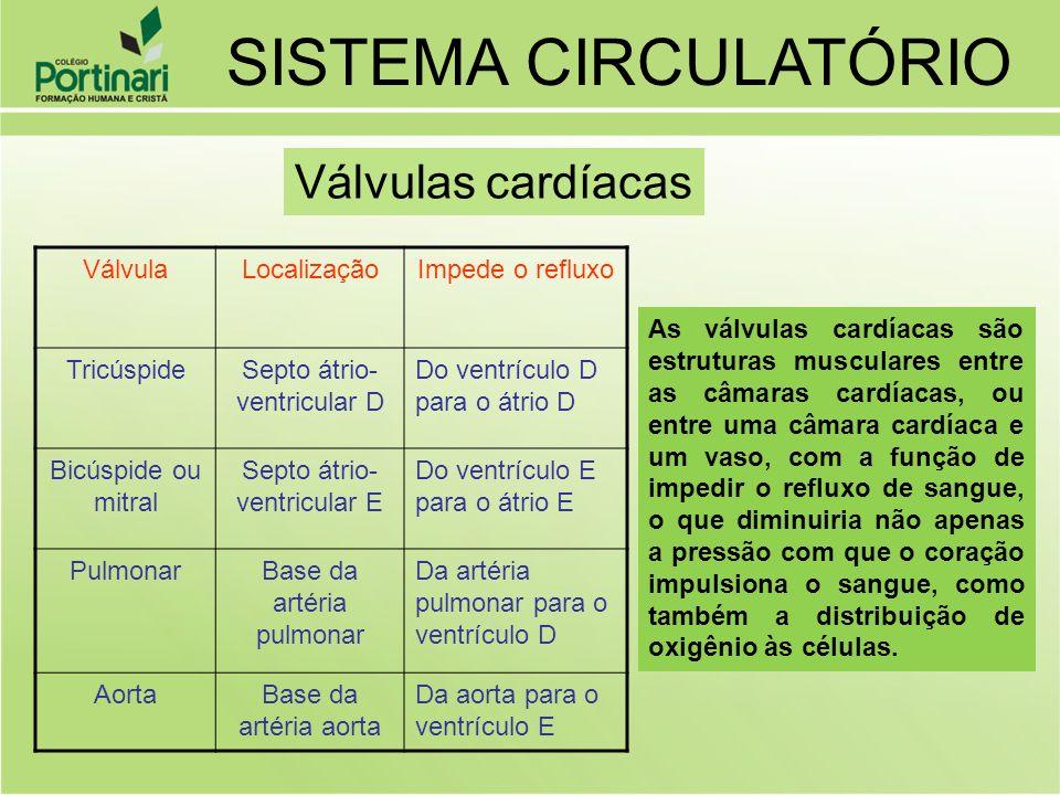 SISTEMA CIRCULATÓRIO Válvulas cardíacas Válvula Localização