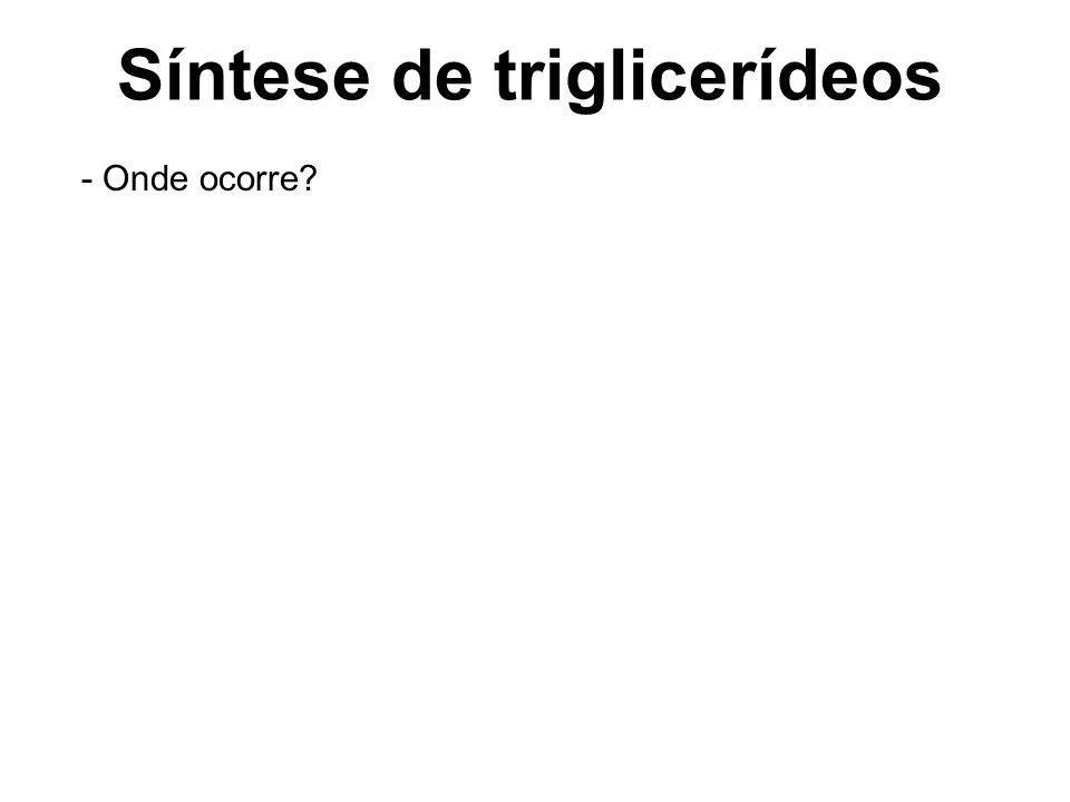 Síntese de triglicerídeos