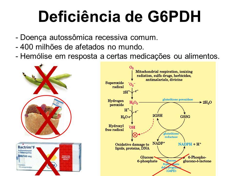 X X X Deficiência de G6PDH - Doença autossômica recessiva comum.
