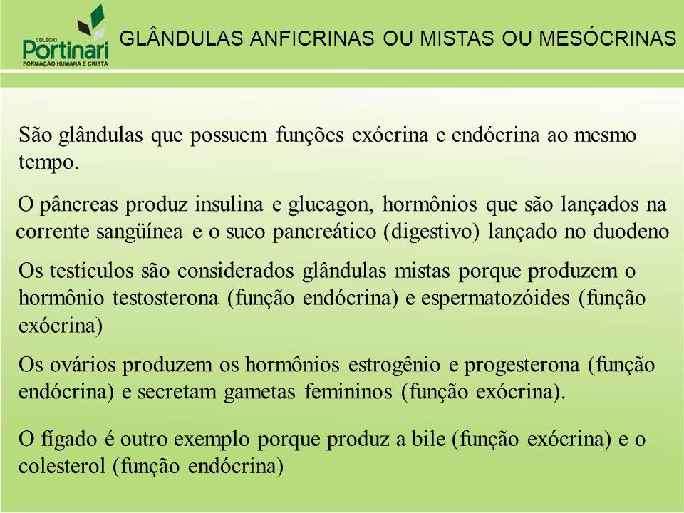 São glândulas que possuem funções exócrina e endócrina ao mesmo tempo.