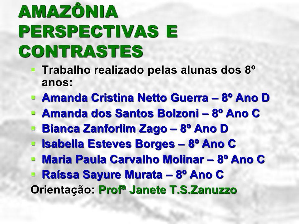 AMAZÔNIA PERSPECTIVAS E CONTRASTES