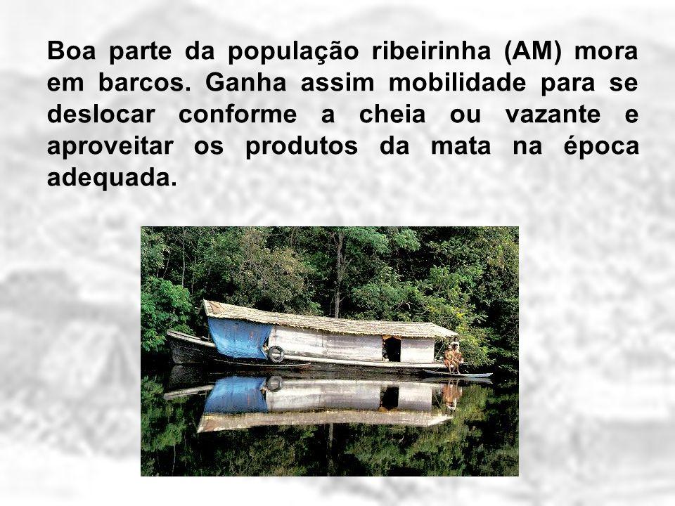 Boa parte da população ribeirinha (AM) mora em barcos