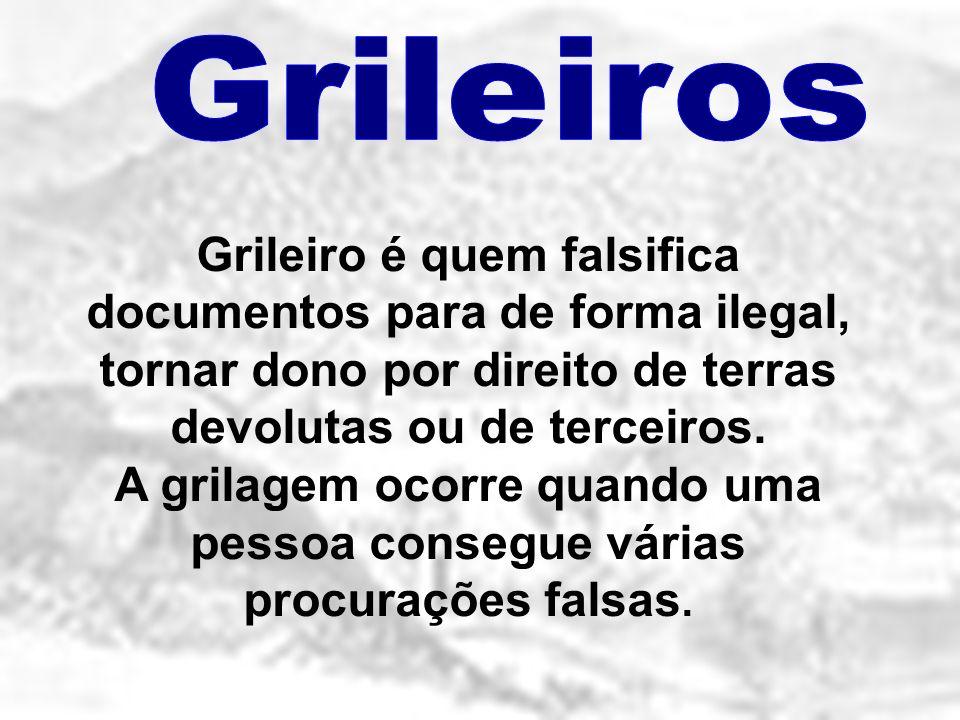 Grileiros Grileiro é quem falsifica documentos para de forma ilegal, tornar dono por direito de terras devolutas ou de terceiros.