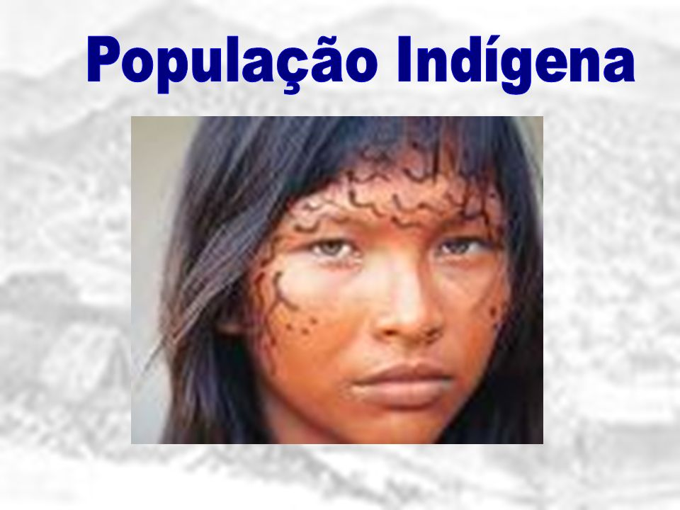 População Indígena