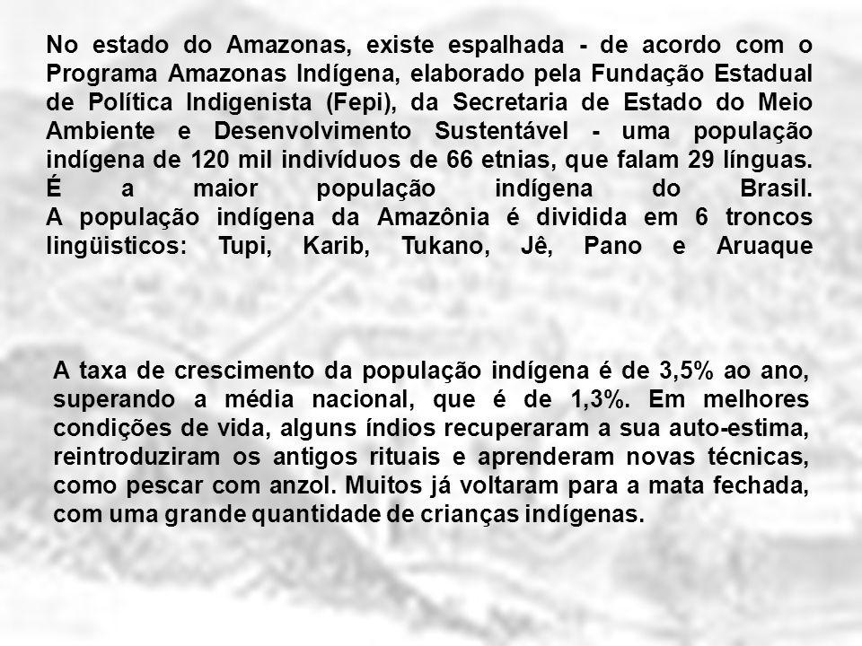No estado do Amazonas, existe espalhada - de acordo com o Programa Amazonas Indígena, elaborado pela Fundação Estadual de Política Indigenista (Fepi), da Secretaria de Estado do Meio Ambiente e Desenvolvimento Sustentável - uma população indígena de 120 mil indivíduos de 66 etnias, que falam 29 línguas. É a maior população indígena do Brasil. A população indígena da Amazônia é dividida em 6 troncos lingüisticos: Tupi, Karib, Tukano, Jê, Pano e Aruaque