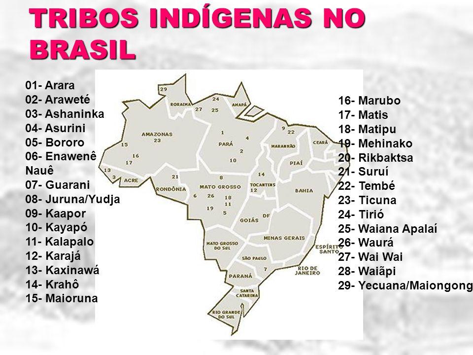TRIBOS INDÍGENAS NO BRASIL
