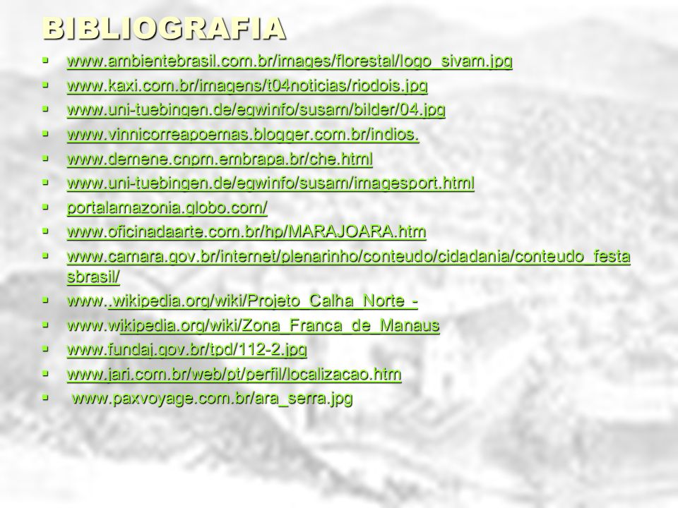 BIBLIOGRAFIA www.ambientebrasil.com.br/images/florestal/logo_sivam.jpg