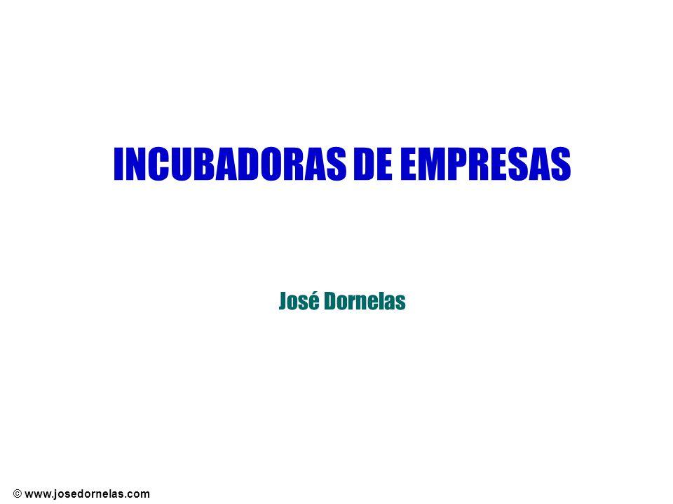 INCUBADORAS DE EMPRESAS José Dornelas
