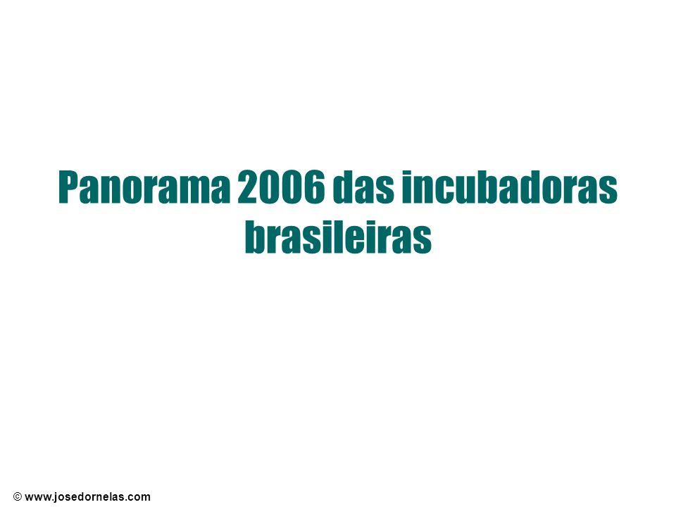 Panorama 2006 das incubadoras brasileiras