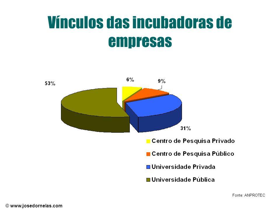 Vínculos das incubadoras de empresas