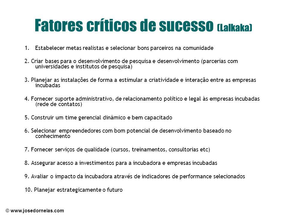 Fatores críticos de sucesso (Lalkaka)