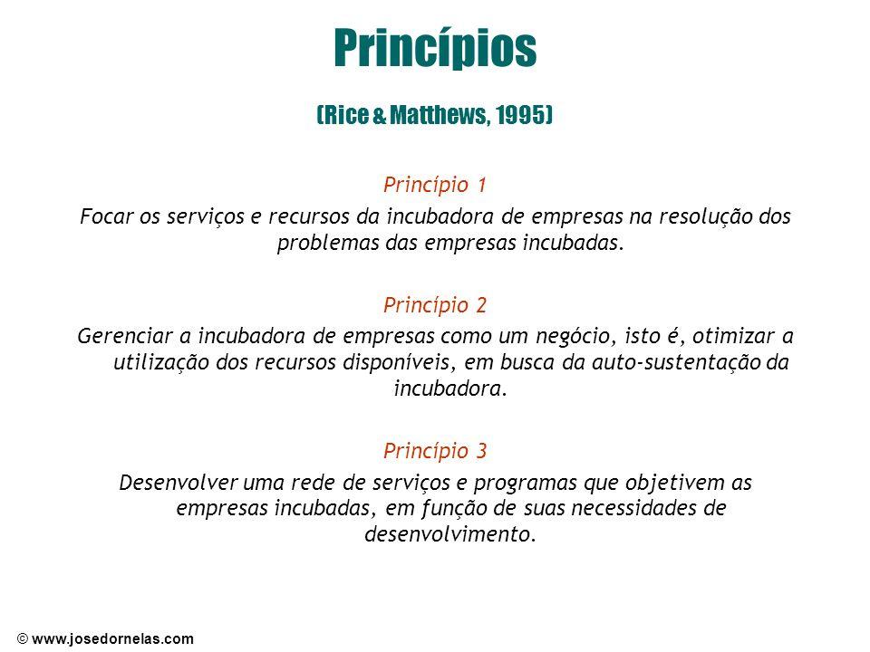 Princípios (Rice & Matthews, 1995)