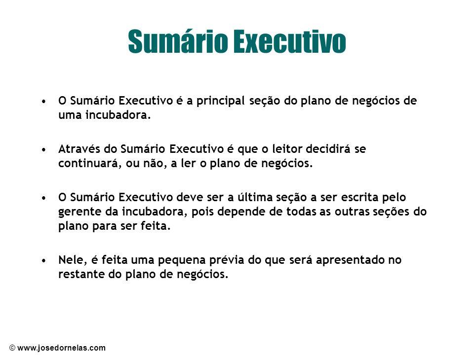 Sumário Executivo O Sumário Executivo é a principal seção do plano de negócios de uma incubadora.