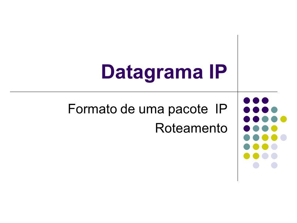 Formato de uma pacote IP Roteamento