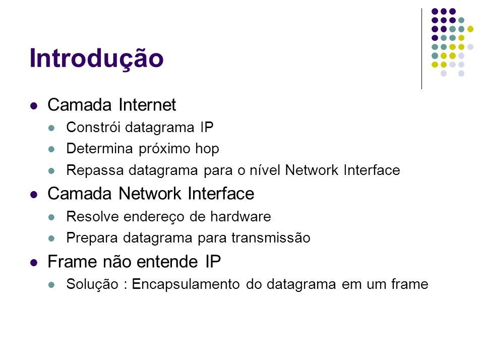 Introdução Camada Internet Camada Network Interface