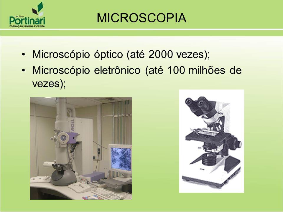 MICROSCOPIA Microscópio óptico (até 2000 vezes);