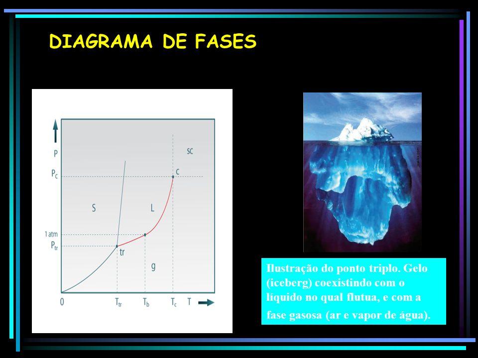 DIAGRAMA DE FASES Ilustração do ponto triplo.