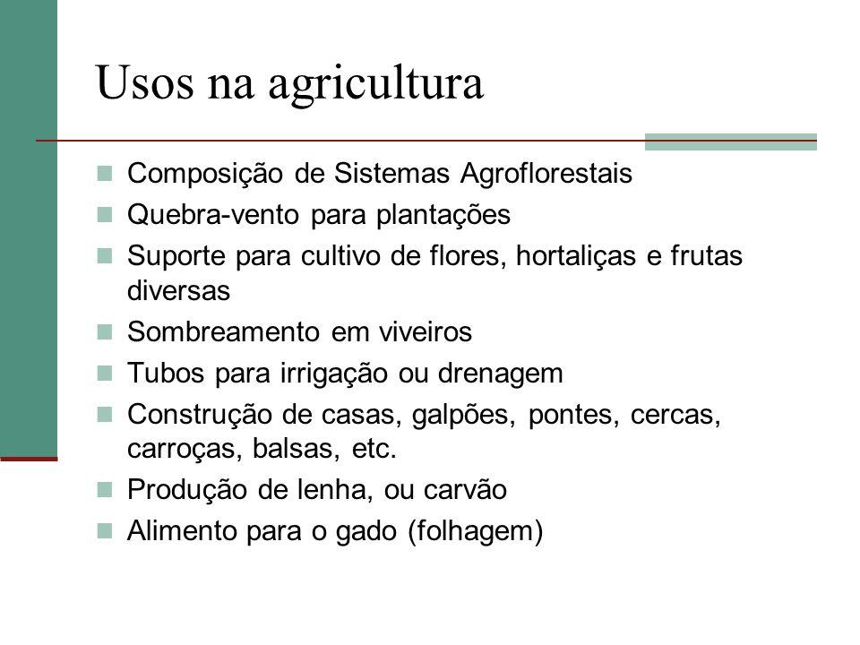 Usos na agricultura Composição de Sistemas Agroflorestais