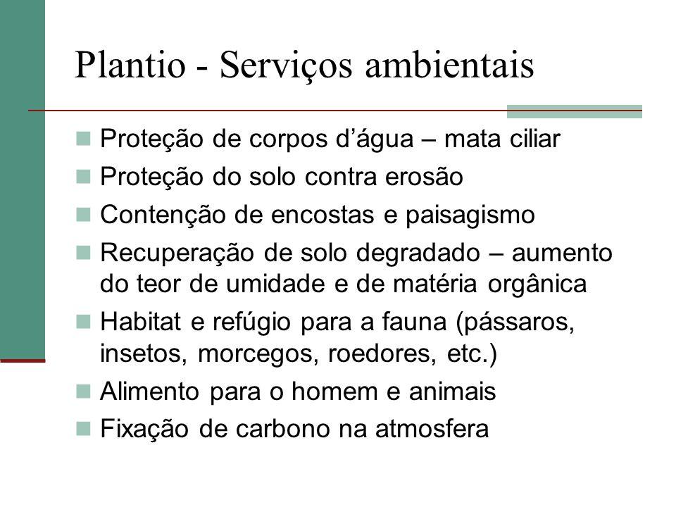 Plantio - Serviços ambientais