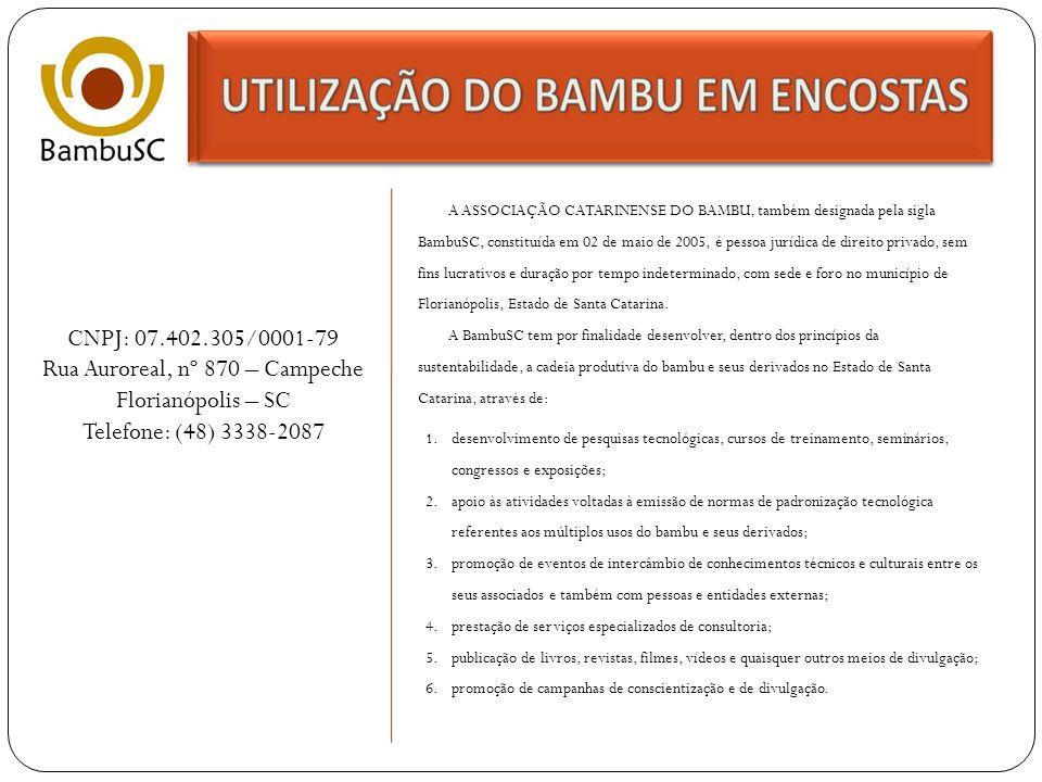 ASSOCIAÇÃO CATARINENSE DO BAMBU