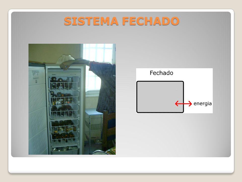 SISTEMA FECHADO
