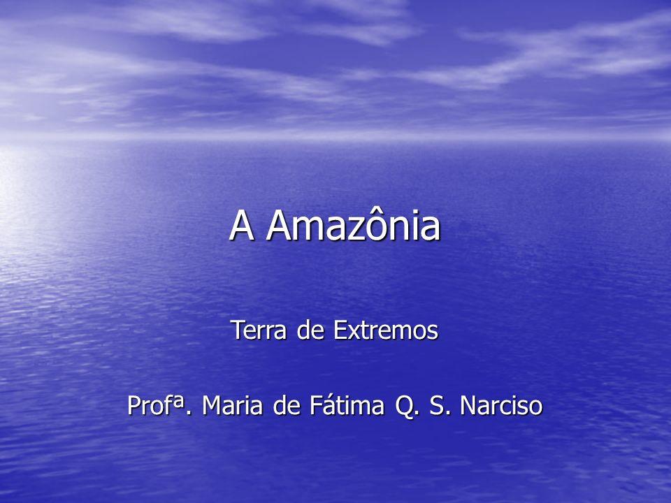 Profª. Maria de Fátima Q. S. Narciso
