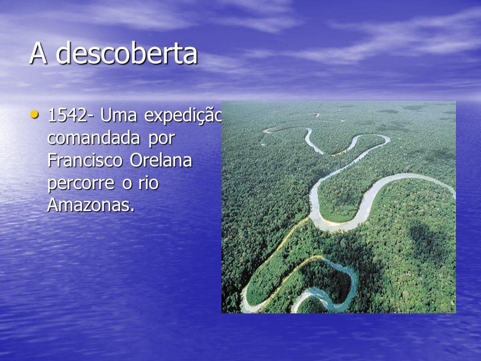 A descoberta 1542- Uma expedição comandada por Francisco Orelana percorre o rio Amazonas.