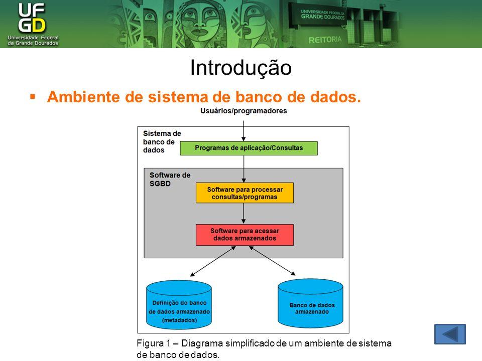 Introdução Ambiente de sistema de banco de dados.