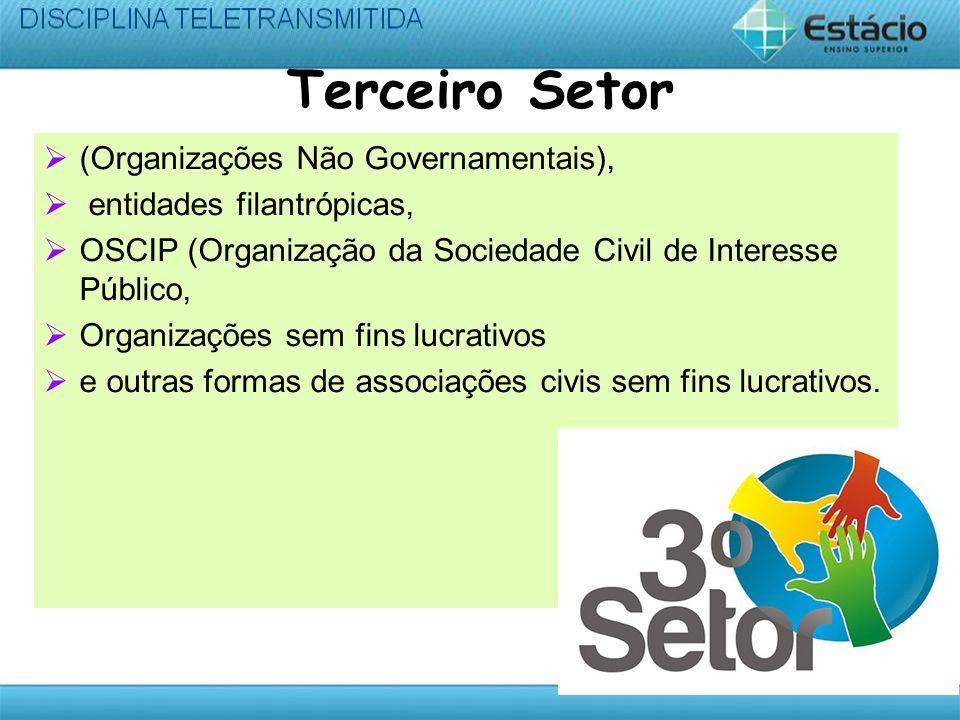 Terceiro Setor (Organizações Não Governamentais),