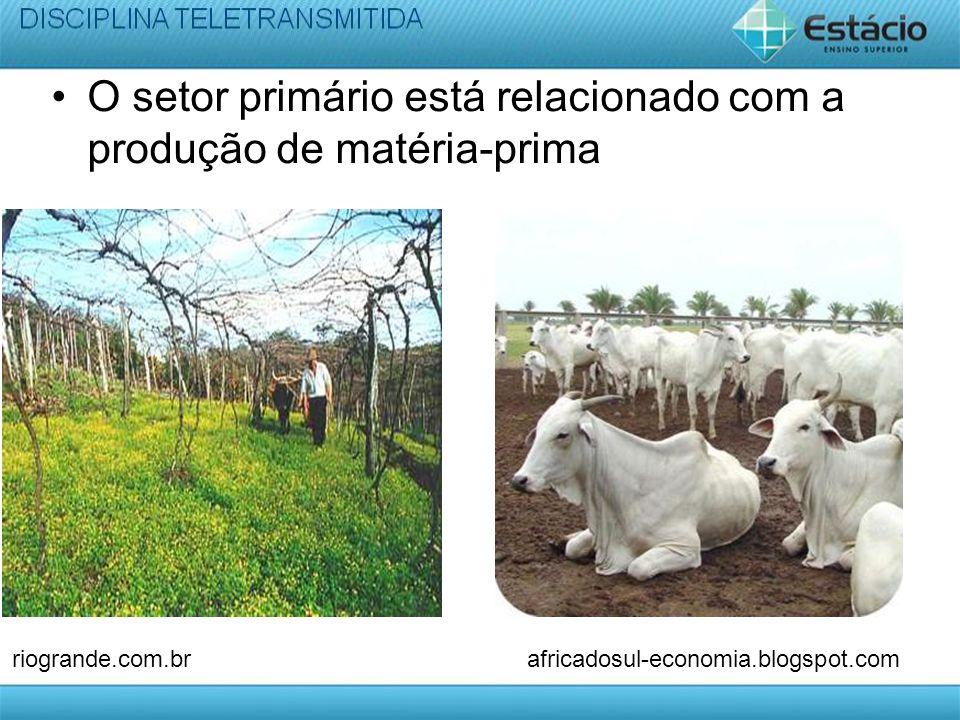 O setor primário está relacionado com a produção de matéria-prima