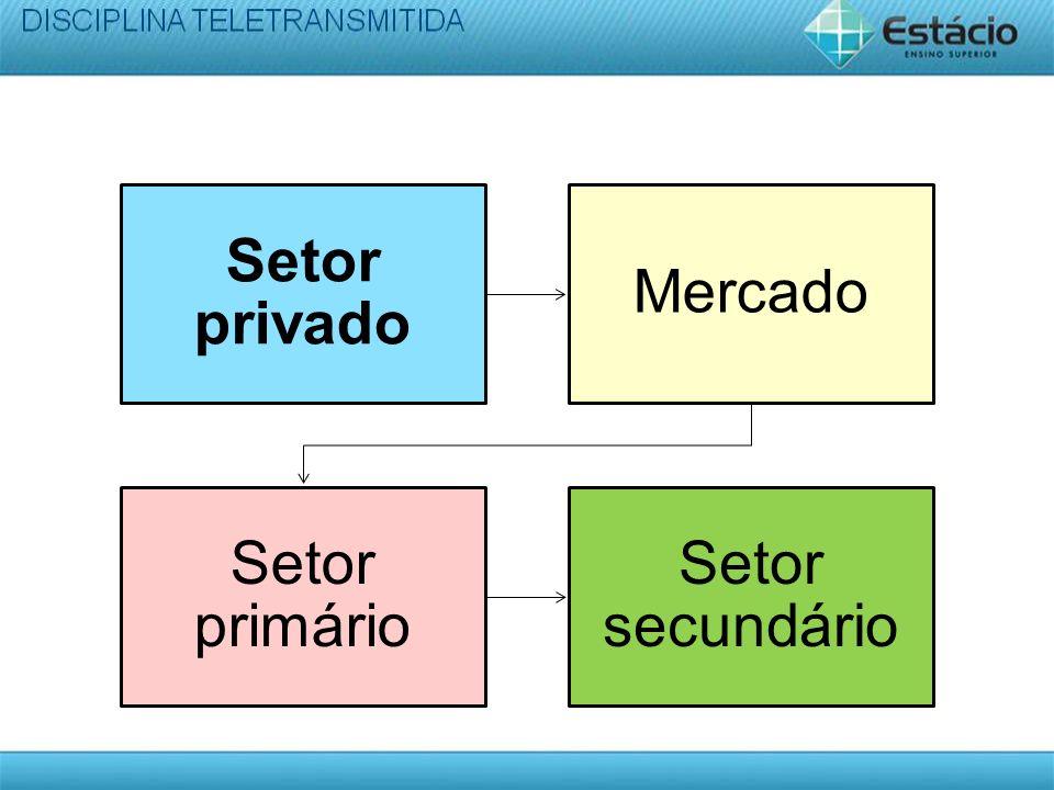 Setor privado Mercado Setor primário Setor secundário