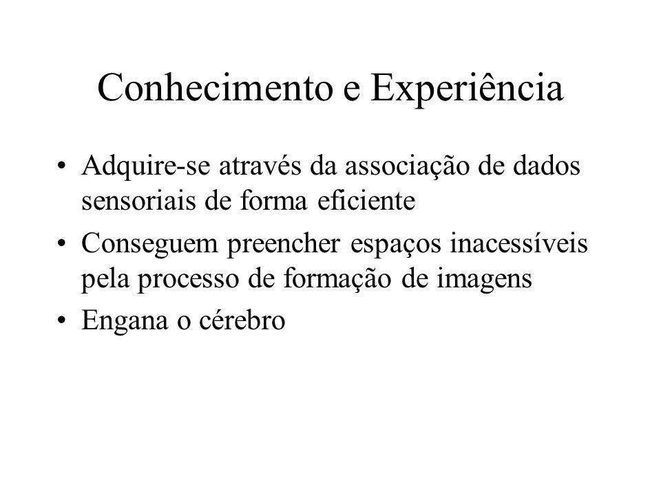 Conhecimento e Experiência