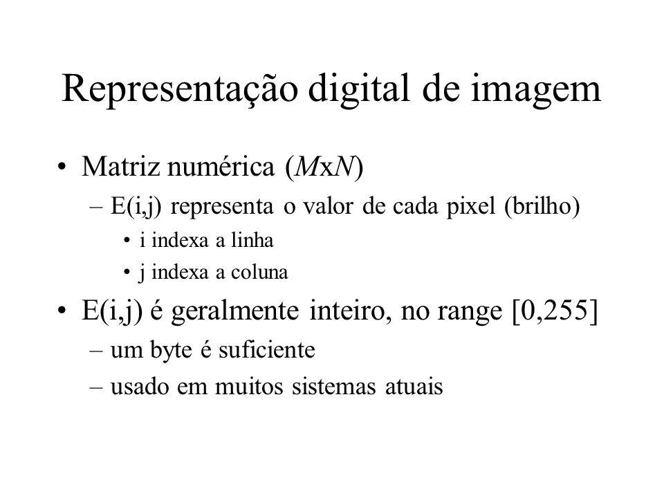 Representação digital de imagem