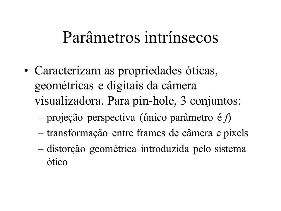 Parâmetros intrínsecos