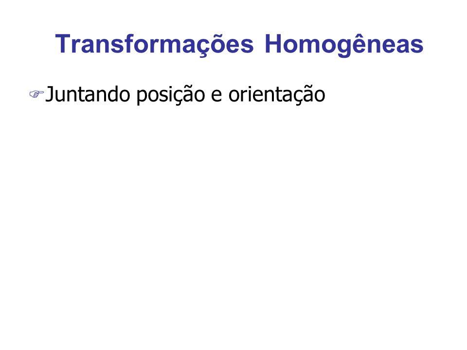 Transformações Homogêneas