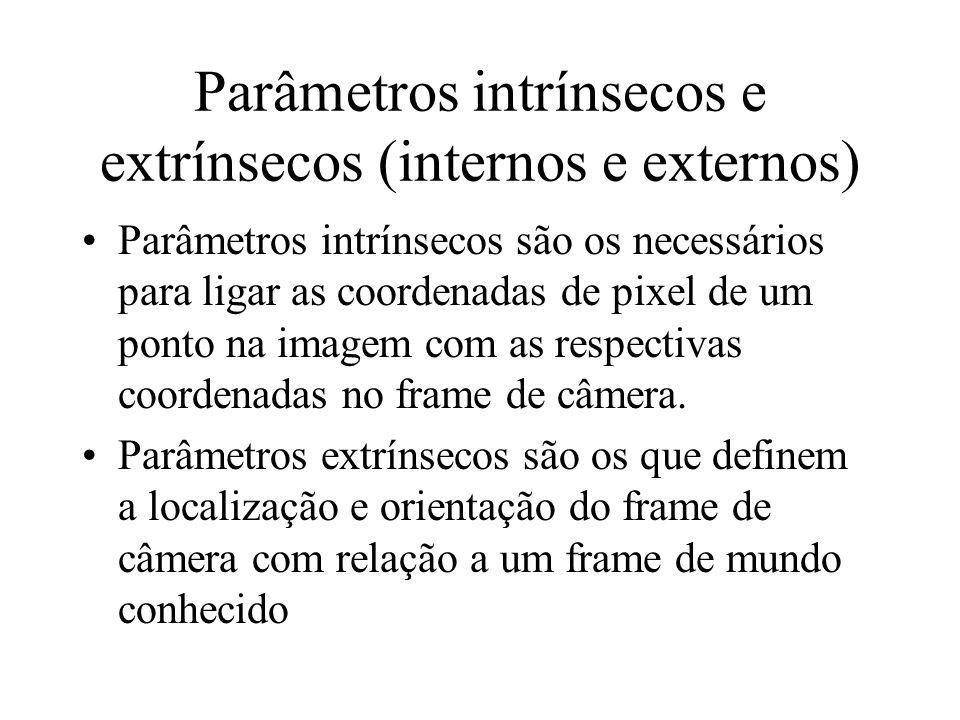 Parâmetros intrínsecos e extrínsecos (internos e externos)
