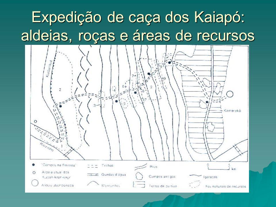 Expedição de caça dos Kaiapó: aldeias, roças e áreas de recursos